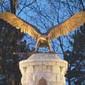 Balogvölgyiek a putnoki turul-szobor avatásán