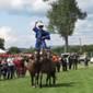 Buck Viktor jászberényi csikós lovasbemutatója
