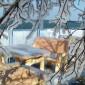 Márciusi tél a bősi vízierőműnél