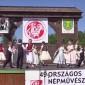 49. ONF - Naszvadi Mini Pettyem Néptánccsoport