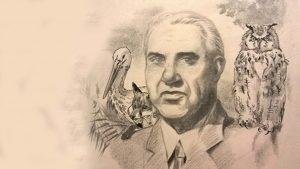 Fekete István (1900–1970)