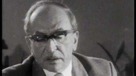 40 éve halt meg Gábor Dénes