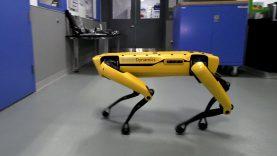 Hány SpotMini robot húz el egy teherautót?