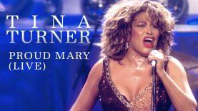 Tina Turner 80